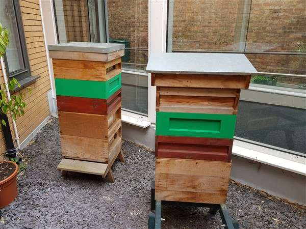 mc hives with supers